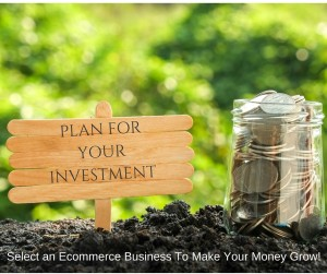 Pure-Ecommerce-plan-your-investment