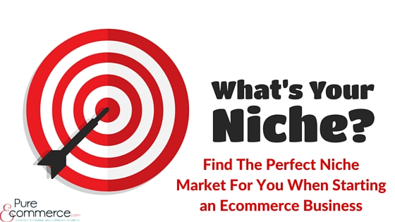 Pure-Ecommerce-Ecommerce-Business-Niche-Market-Blog-Title