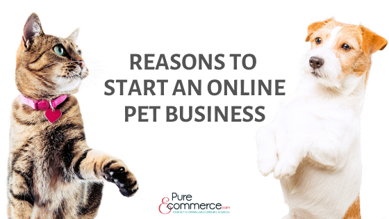 start-an-online-pet-business